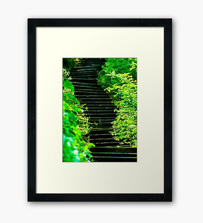Sunny steps in Scarborough Framed Print
