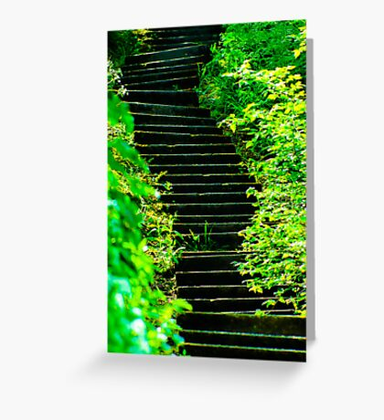 Sunny steps in Scarborough Greeting Card
