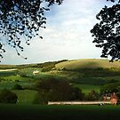 North Wessex Downs by mlphoto