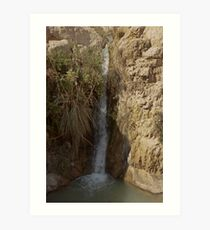 Water Fall At The Ein Gedi Oasis Art Print
