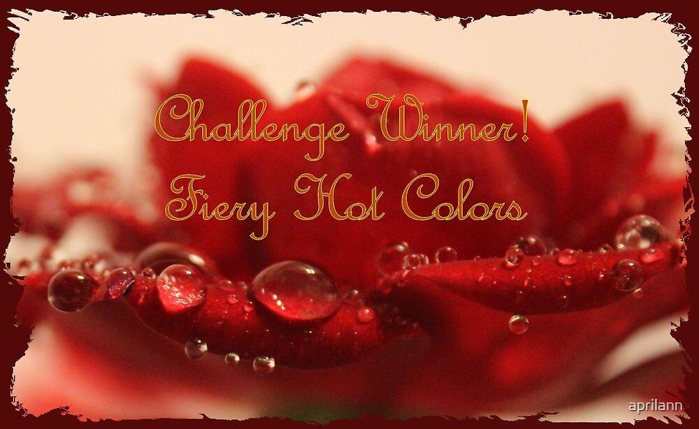 Banner - FHC - Challenge Winner by aprilann