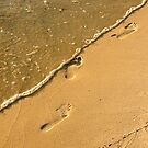 Footprints at the edge by Bill Gamblin