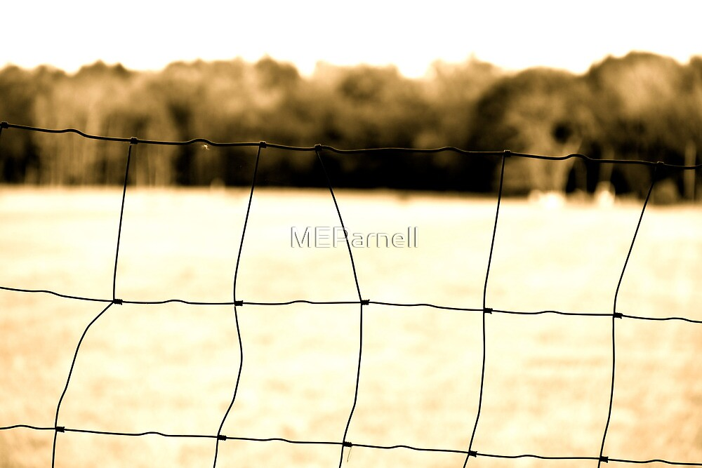 Fenced In by MEParnell