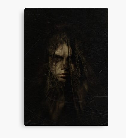 the weeping veil Canvas Print