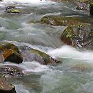 Springbrook Rocks by sarcalder