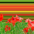 Poppy explosion by Thomas Tolkien