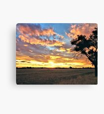 Stockinbingal Sunset # 1 Canvas Print