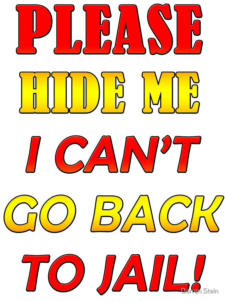Please hide me by Darren Stein