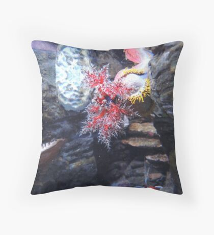 The Coral and the Shrimp Throw Pillow