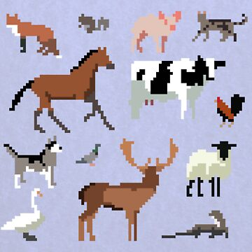 Animals of the UK by jackhowse