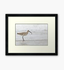 Catch Of The Day ~ Framed Print