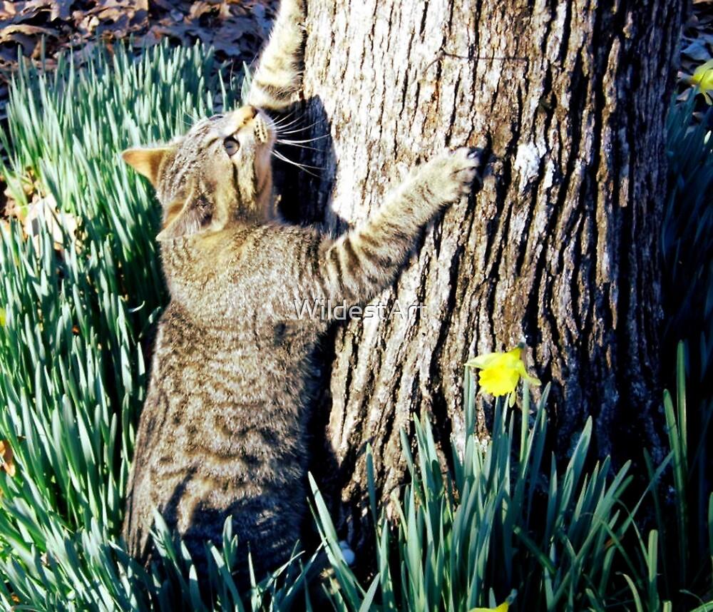 The Tree hugger by WildestArt