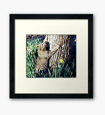 The Tree hugger Framed Print