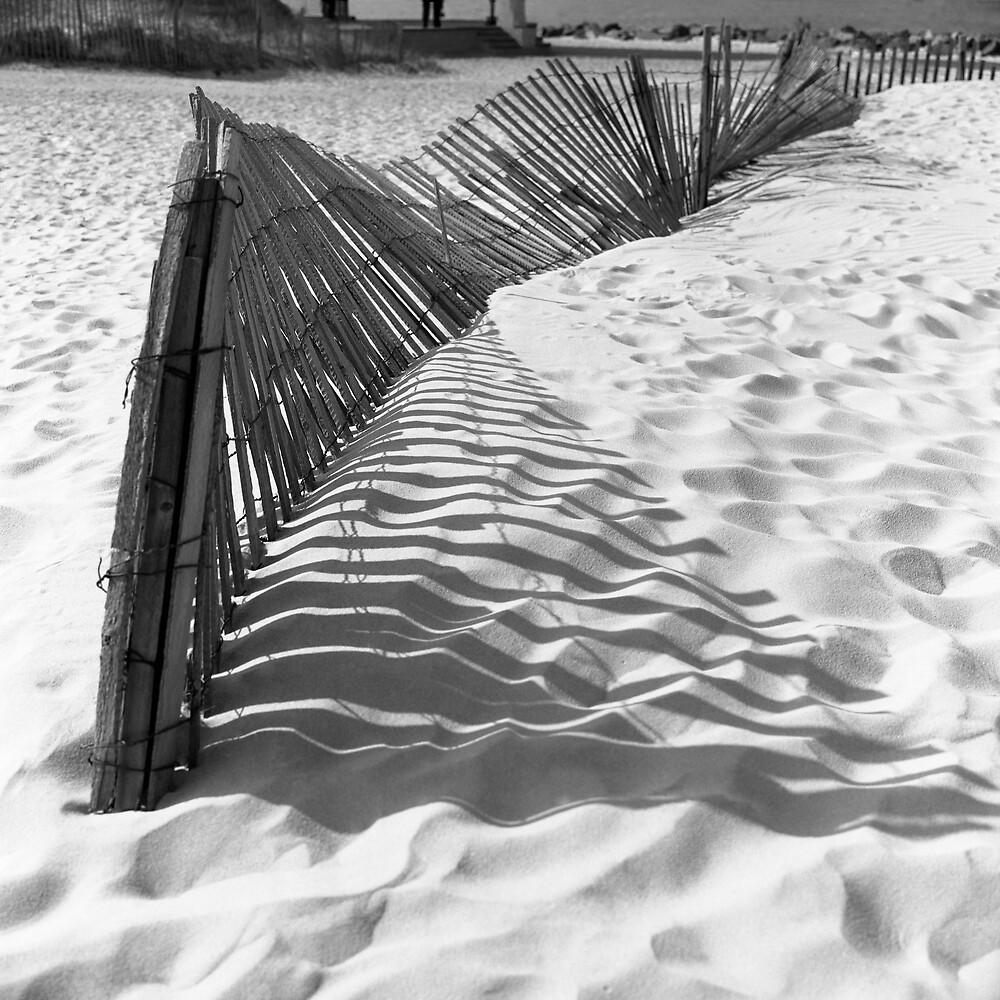 Fence by Henri Bersoux