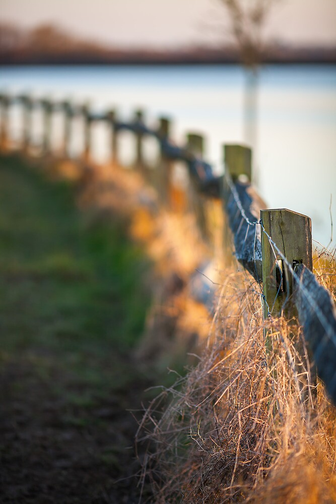 winter fence by James Calvey