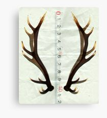 antlers measure Canvas Print