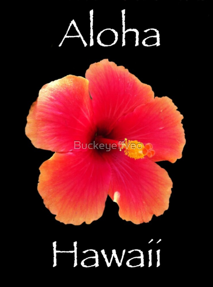 Hawaiian greetings by buckeyefiveo redbubble hawaiian greetings by buckeyefiveo m4hsunfo