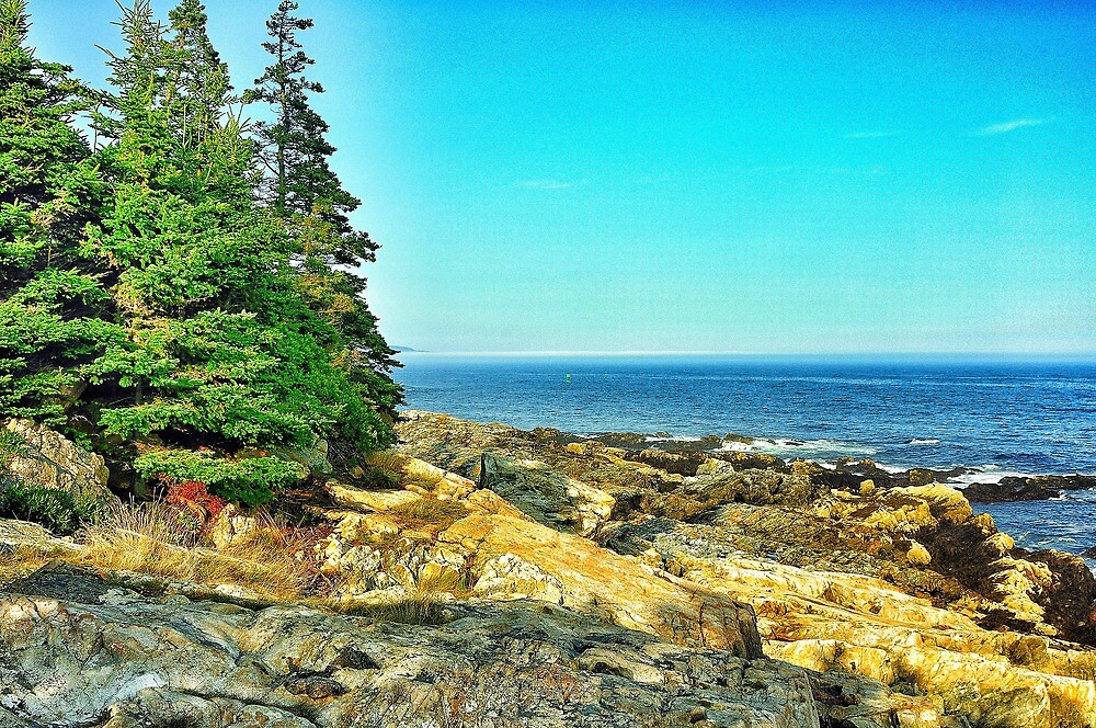 Acadia Mational Park, Maine, USA by fauselr