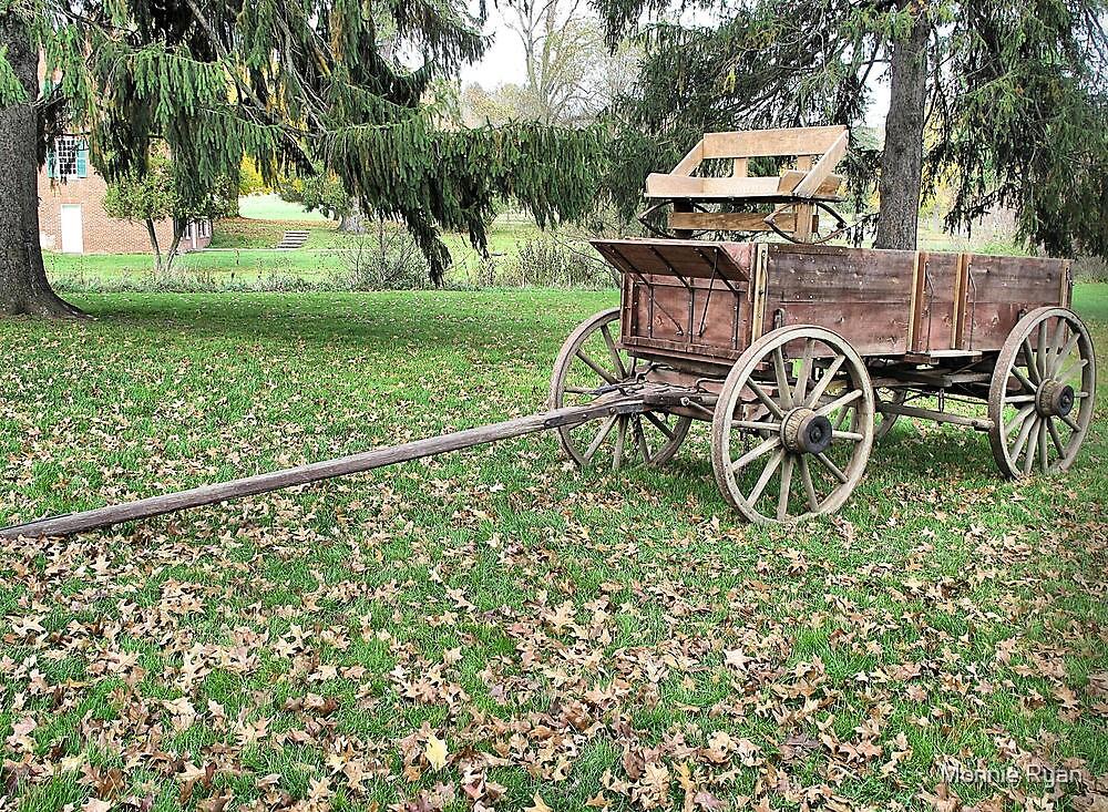 Welcome Wagon by Monnie Ryan