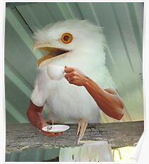 Surprised albino Frogmouth drinking coffee Poster
