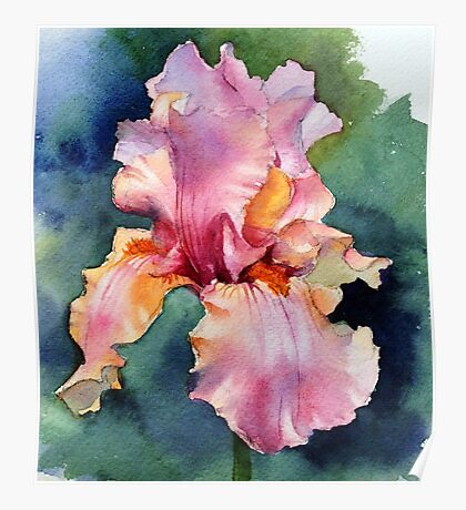 Afternoon Delight Iris Poster
