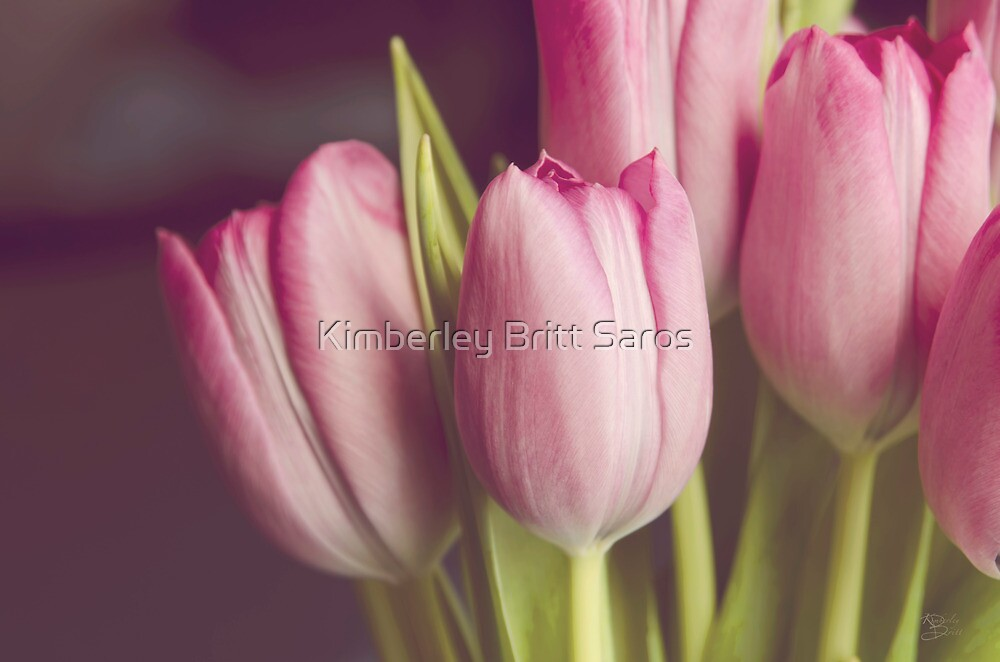 Softness of Spring by KBritt
