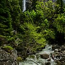 Bridalveil and Runoff by Cat Connor