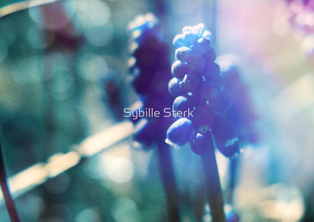 Spring Light by Sybille Sterk