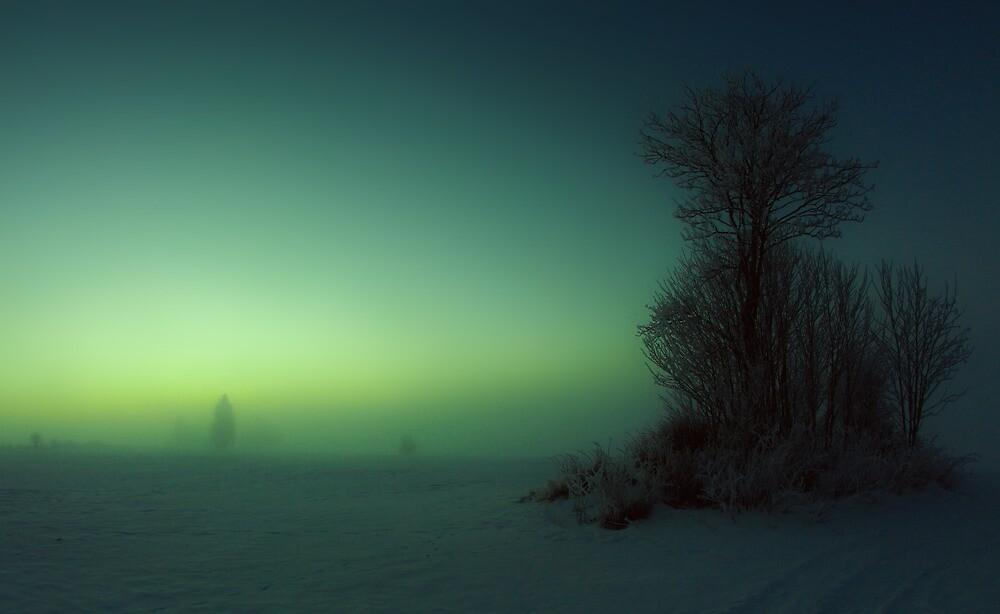Den iskalla Vargtimmen by Daniel G.
