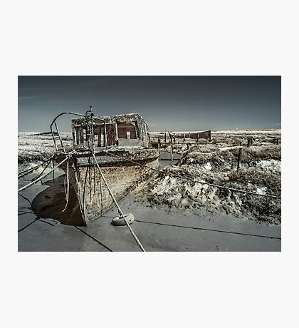 Stranded On The Marsh Photographic Print