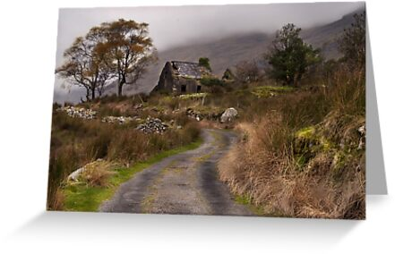 Black Valley Cottage by DesDaly