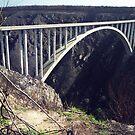 Bloukrans Bridge, Garden Route, RSA by Bev Pascoe
