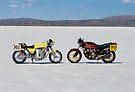 Honda CBX  by Frank Kletschkus