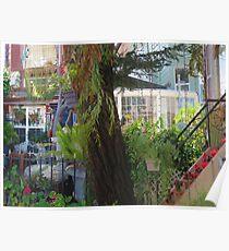 Lyon Street Sidewalk Garden Poster