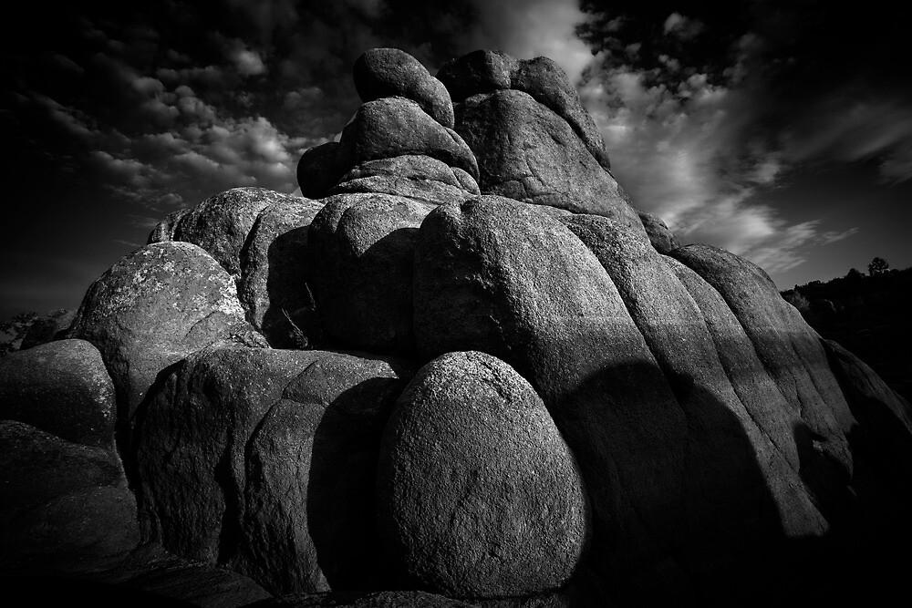 Pile by Bob Larson
