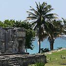 Mayan Ruins by Erin Flynn