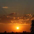 Sunset by Erin Flynn