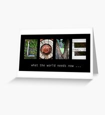 What the world needs now... Greeting Card