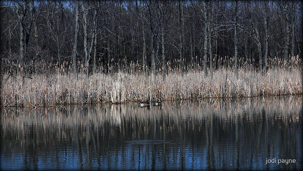 Reflections Of Serenity by jodi payne