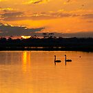 Sunset over Lake Borrie by Brad Francis
