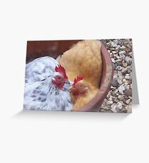 Pekin Bantam Hens Dustbathing Greeting Card