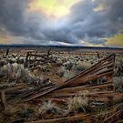 Way Out There by Charles & Patricia   Harkins ~ Picture Oregon