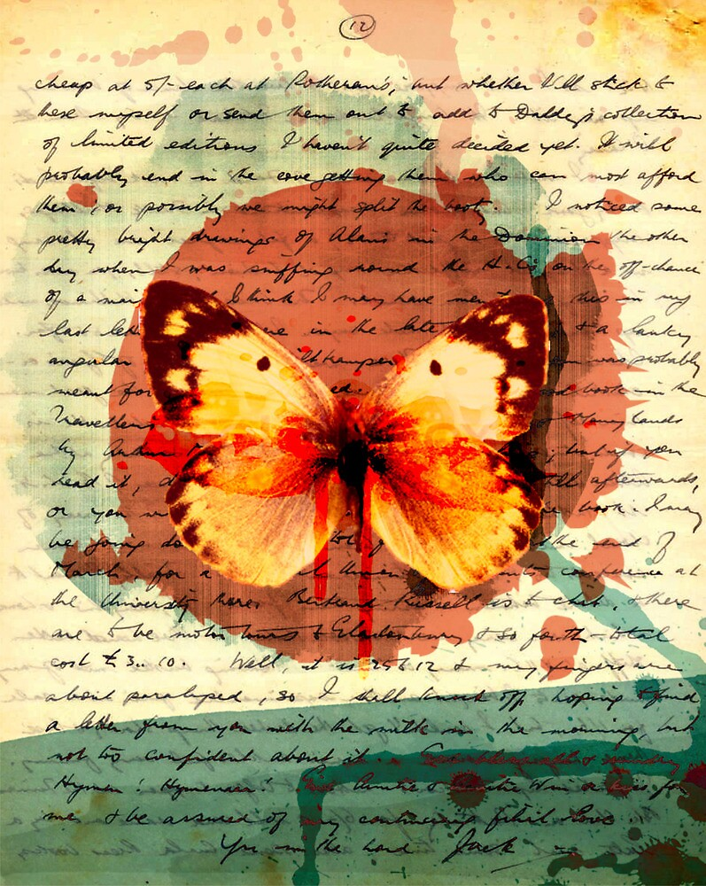 Butterfly by anouviss