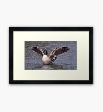 Flapping Framed Print