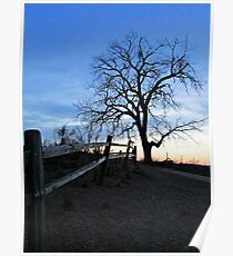 Rustic Trail Poster