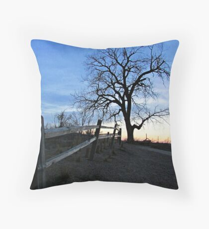 Rustic Trail Throw Pillow