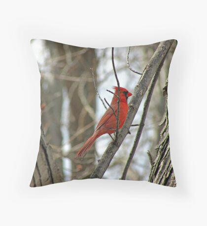 Royal Redbird Throw Pillow
