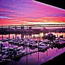 Pink Sunrise by Jennifer Hartnett-Henderson