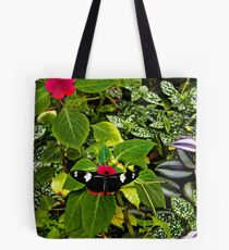 Mindo Butterfly At Rest Tote Bag
