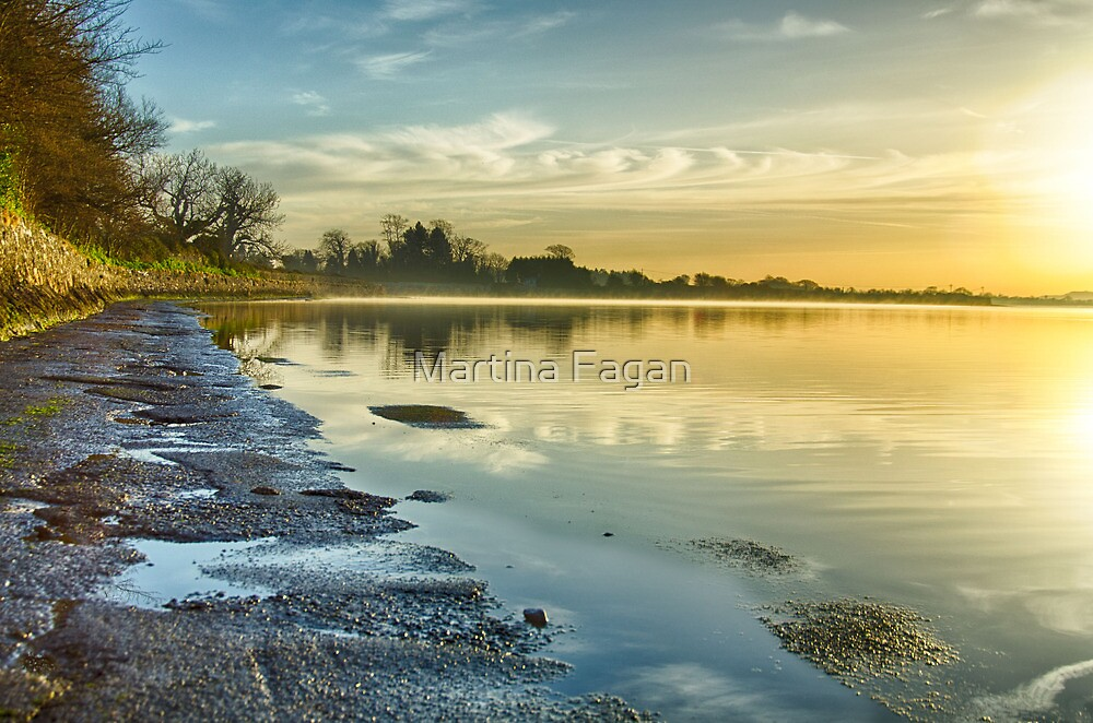 An April morning on the Estuary by Martina Fagan